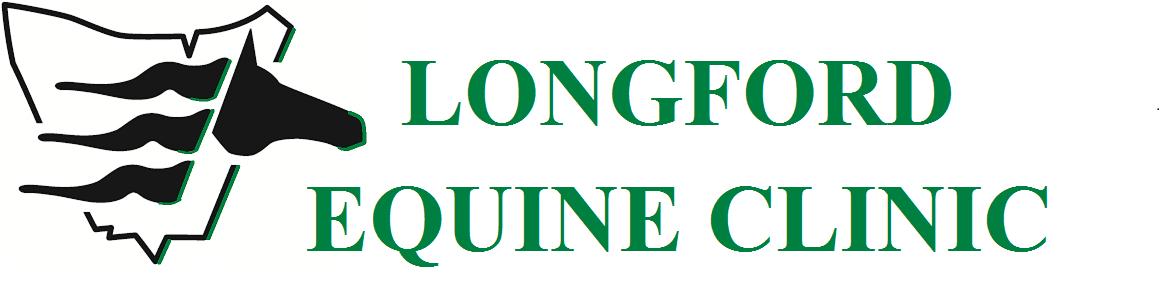 Longford Equine